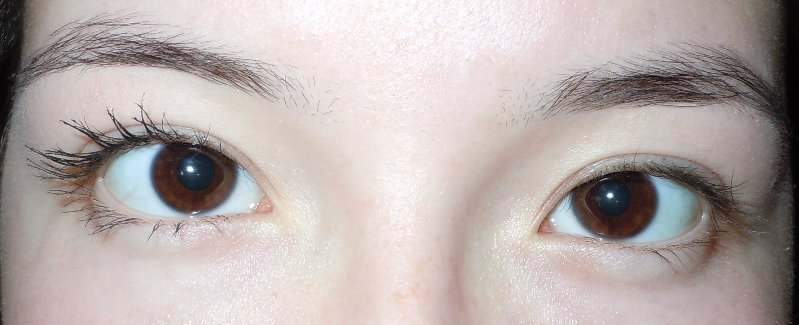Review: L'oreal Lash Out Butterfly Mascara | Eye Have A Lot of ...